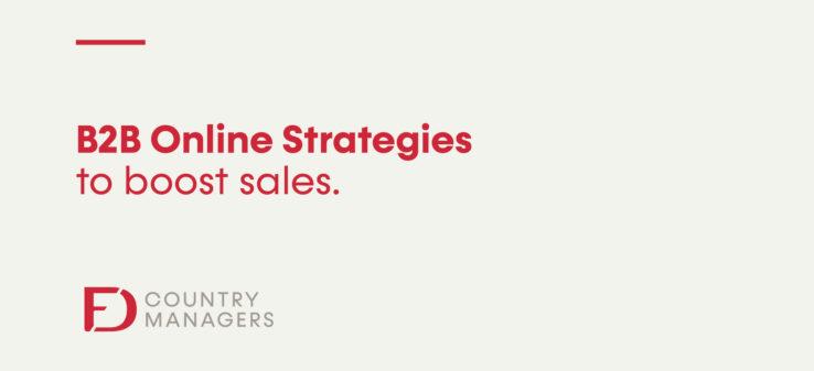 B2B Online Strategies